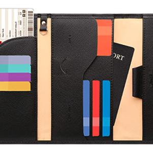 Evolution Passport Travel Wallet