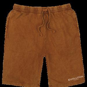 Evolution Vintage Dye Unisex Shorts