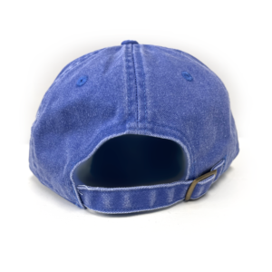 """Evolution Logo """"Dad Hat"""" Blue"""